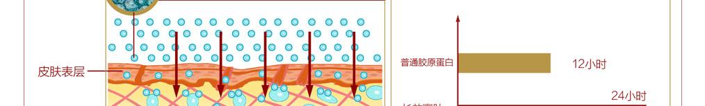 2013胶原蛋白化妆品|翌生美胶原臻蔲焕颜眼霜|补水抗皱|胶原蛋白护肤品11