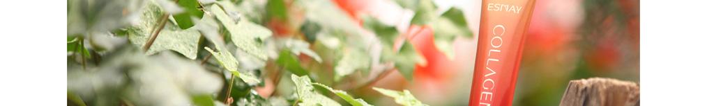 2013胶原蛋白化妆品|翌生美胶原臻蔲焕颜眼霜|补水抗皱|胶原蛋白护肤品30